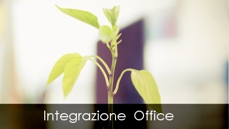 software, office automation, Microsoft Office, Word, Excel, Access, Outlook, Power Point, integrazione, incorporamento, collegamento, Copia e Incolla, funzioni Macro, Macro, Macro Word, Macro Excel, Power Point, Outlook